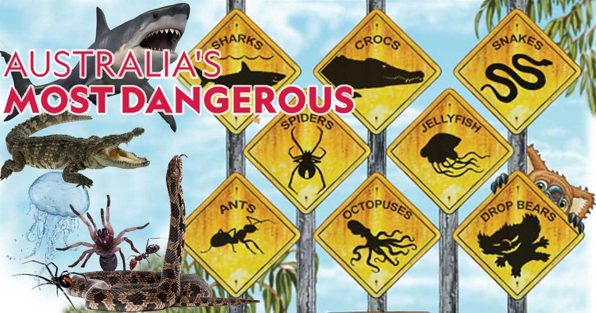 Australia's deadliest animals
